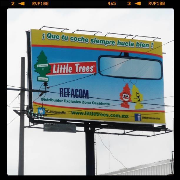 2013.8.22 LITTLE TREES MEXICO