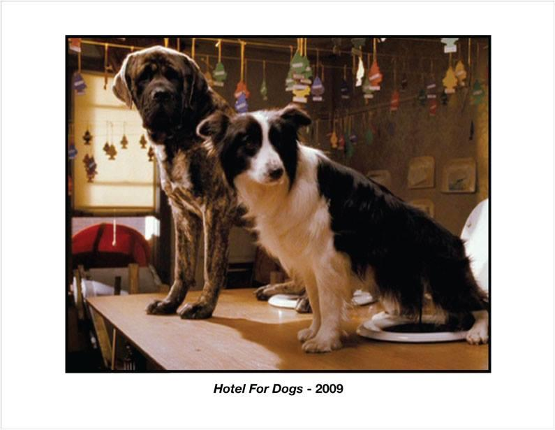 2013.6.12 Hotel For Dogs 2009年